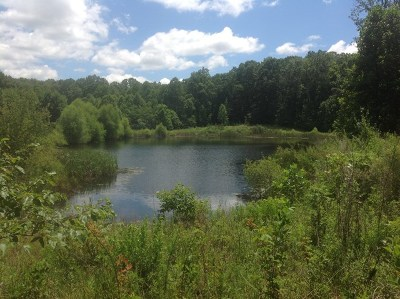 Pikeville TN Residential Lots & Land For Sale: $775,000