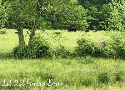 Baxter Residential Lots & Land For Sale: Lot 022 SW Gentry Drive