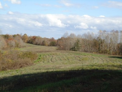 Red Boiling Springs TN Residential Lots & Land For Sale: $210,111