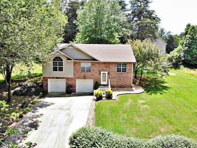 Single Family Home For Sale: 101 Big Springs Circle