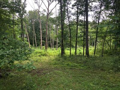 Residential Lots & Land For Sale: 1217 Gray Fox Drive