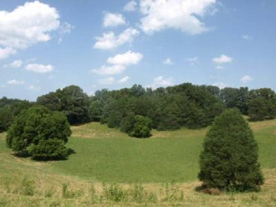 Residential Lots & Land For Sale: 62.85ac Old Stone Road