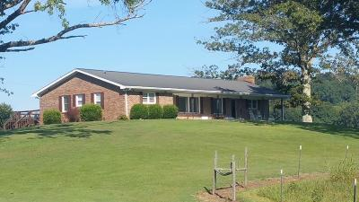Single Family Home For Sale: 435 Standing Stone Park Hwy.