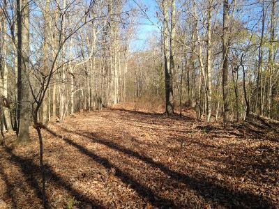 Residential Lots & Land For Sale: 12 Ac Long Ridge Rd