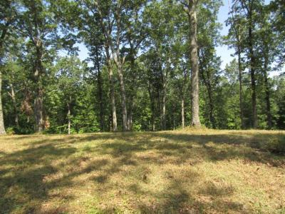 Residential Lots & Land For Sale: 20.23 Bearpen Road