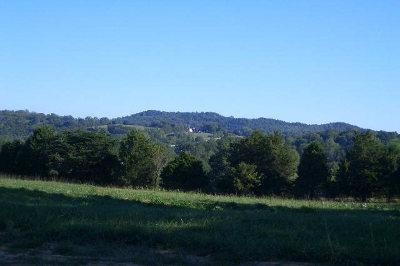 Putnam County Residential Lots & Land For Sale: 1929 Bear Creek Pointe