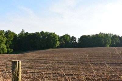 Livingston Residential Lots & Land For Sale: 120 Ac Willow Grove Hwy