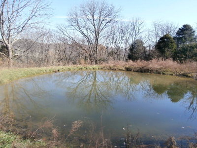 Granville Residential Lots & Land For Sale: 69 Acres Big Branch