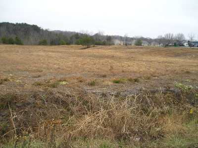 Cookeville Residential Lots & Land For Sale: 130 Highway 111