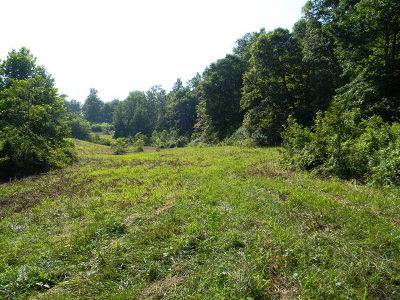 Cookeville TN Residential Lots & Land For Sale: $225,600