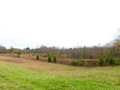 Cookeville, Baxter Residential Lots & Land For Sale: 22.5 Ac Highway 111