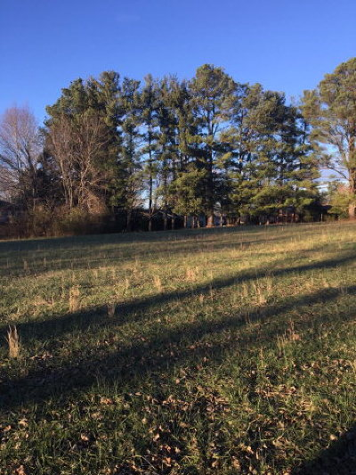 Cookeville Residential Lots & Land For Sale: 1510 10th Street
