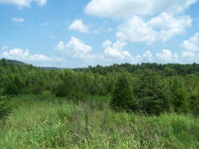 Sparta TN Residential Lots & Land For Sale: $24,900