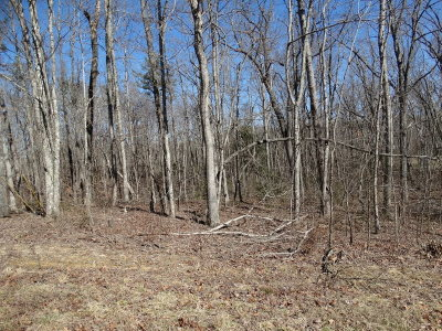 Putnam County Residential Lots & Land For Sale: Tanner Drive Lot 2