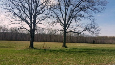 Cookeville TN Residential Lots & Land For Sale: $23,900
