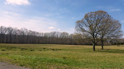 Cookeville TN Residential Lots & Land For Sale: $45,900