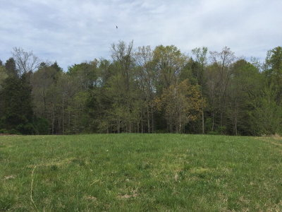 Cookeville Residential Lots & Land For Sale: Lot 47 Eagle Landing Drive