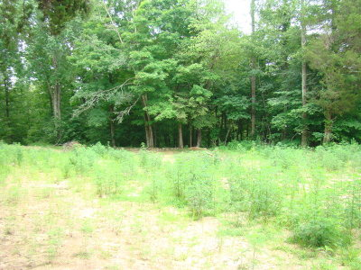 Rickman Residential Lots & Land For Sale: 68.84 Ac Pleasant Shade