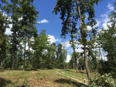 Cookeville Residential Lots & Land For Sale: Tract 5 Ben Mason Rd