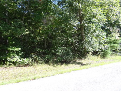 Residential Lots & Land For Sale: 138 Hunterwood Ln