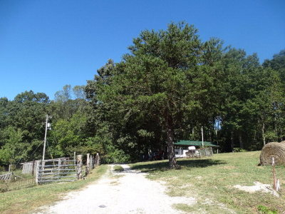 Rickman Residential Lots & Land For Sale: Lone Oak Drive - Lot 1