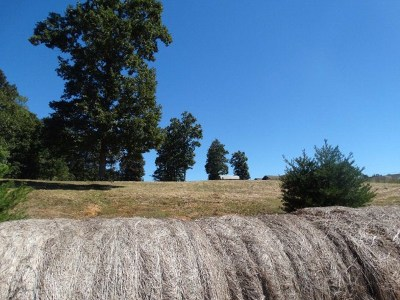 Rickman Residential Lots & Land For Sale: 675 Lone Oak Drive - Lot 23