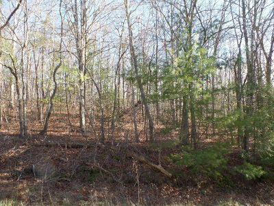 Residential Lots & Land For Sale: Lot #2 Gladdice Highway