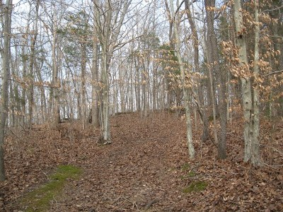 Allons, Celina, Hilham, Moss, Whitleyville Residential Lots & Land For Sale: 10041 Heard Ridge Road