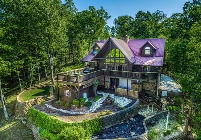 SPARTA Single Family Home For Sale: 125 Bridge Pointe Lane