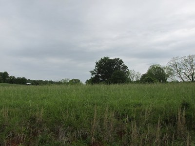 Residential Lots & Land For Sale: 667 Blue Water Dr