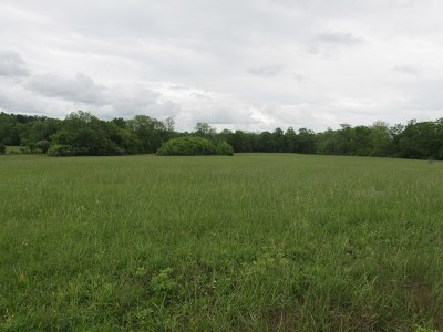 Residential Lots & Land For Sale: 710 Blue Water Dr
