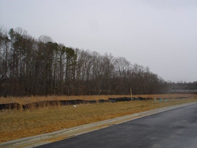 Cookeville, Baxter Residential Lots & Land For Sale: 1.894ac Dale Mires Lane