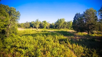 Gainesboro Residential Lots & Land For Sale: 00 York Hwy.