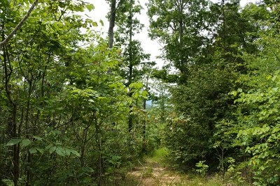 Allons, Celina, Hilham, Moss, Whitleyville Residential Lots & Land For Sale: 70.58 Ac Pleasant Hill Rd