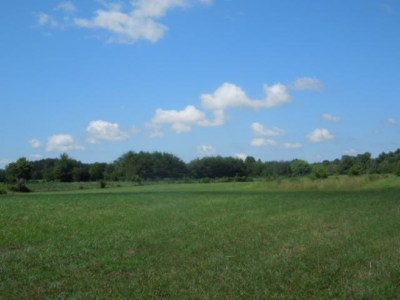 Cookeville Residential Lots & Land For Sale: 8.73 Ac Dodson Branch Hwy/Rector Circle