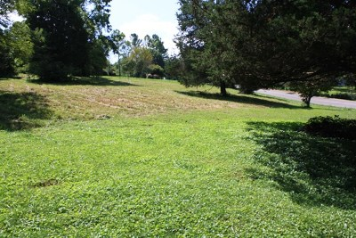 Cookeville Residential Lots & Land For Sale: Lot 2 Cove Rd