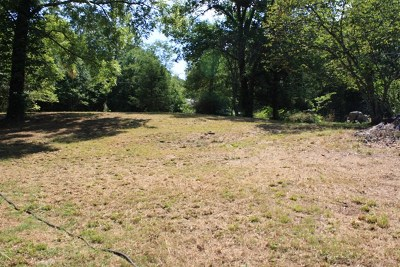 Cookeville Residential Lots & Land For Sale: 5487 Buck Mountain Rd