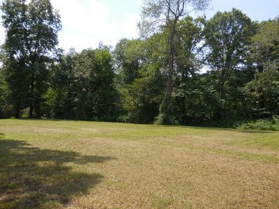 Putnam County Residential Lots & Land For Sale: 2 Ac Lakeland Drive