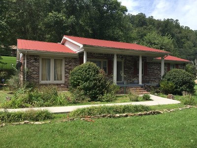 Gainesboro Single Family Home For Sale: 538 Grundy Quarles Hwy