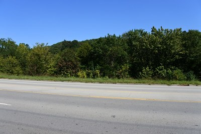 Livingston Residential Lots & Land For Sale: 2.56 Ac Cookeville Hwy