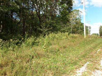 Residential Lots & Land For Sale: 37 Maggart Road
