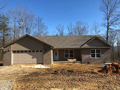Crossville Single Family Home For Sale: 113 Mountain View Road