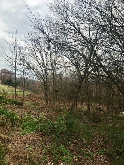 Putnam County Residential Lots & Land For Sale: 3937 Bishop Trace