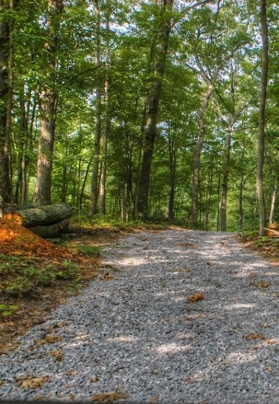 Putnam County Residential Lots & Land For Sale: Lot 19 Cumberland Cove Road