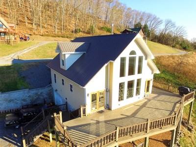 Gainesboro Single Family Home For Sale: 128 Bonnie Blue Lane