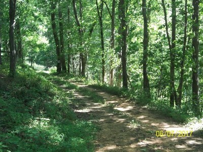 Putnam County Residential Lots & Land For Sale: 9.1 Ac Issac Pass