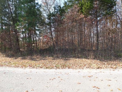 Residential Lots & Land For Sale: 207 Essex Court