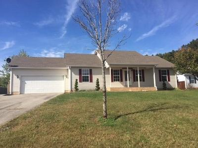 Cookeville Single Family Home For Sale: 1971 Amber Meadows