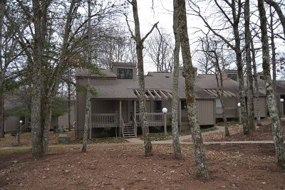 Crossville Single Family Home For Sale: 85 Eagle Court