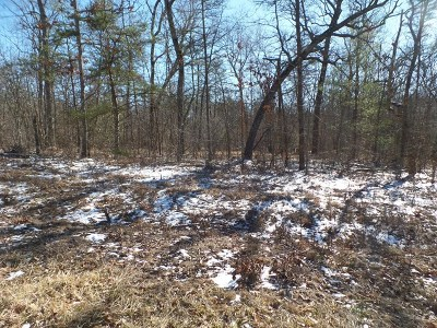 Residential Lots & Land For Sale: 3232 Oswego Road